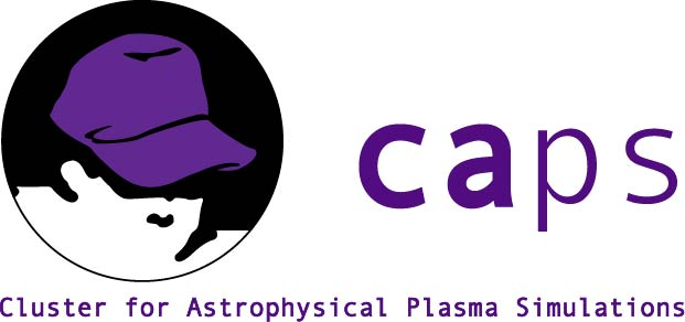 Cluster for Astrophysical Plasma Simulations